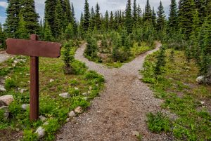 trailhead-pathways